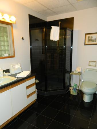 Toad Hall Manor Bed and Breakfast: Nice corner shower