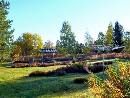 Knappgarden Pension & Restaurant: Trädgården