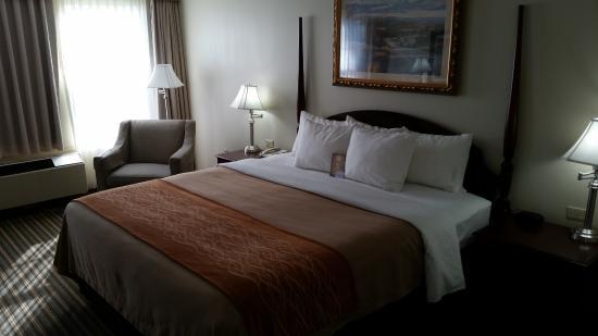 Plainwell, MI: Bed