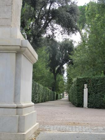 Villa Medici Garden Picture Of Villa Medici Accademia