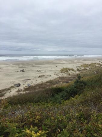 Driftwood Beach State Recreation Site: photo0.jpg