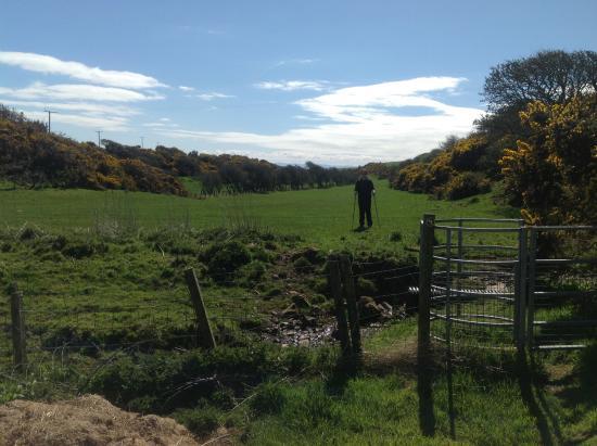 Mull of Galloway, UK: Peaceful walk