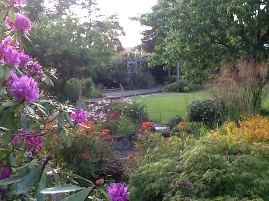 Middlemoor Barn: The gardens
