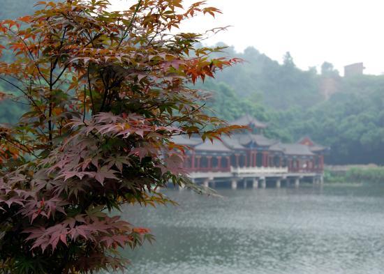 Huayan Temple of Chongqing : вид на озеро