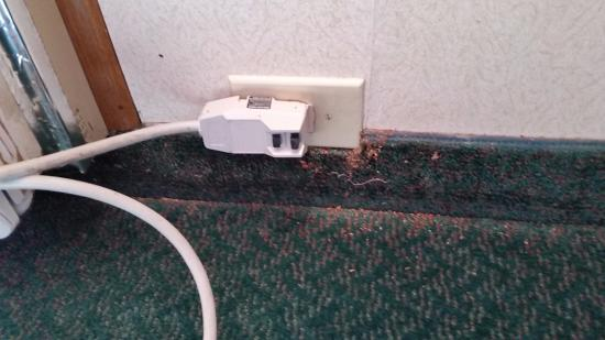 Quality Inn Wright Patterson: All corners of carpet, full of debris, dust, bugs