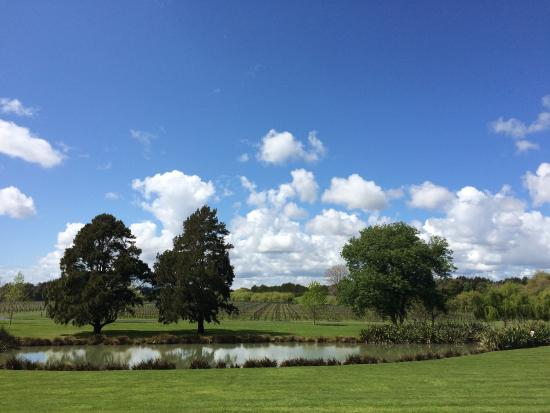 Villa Maria Auckland Winery : photo1.jpg