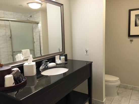 Hampton Inn by Hilton Toronto Airport Corporate Centre: very clean bathroom / shower only no bath tub