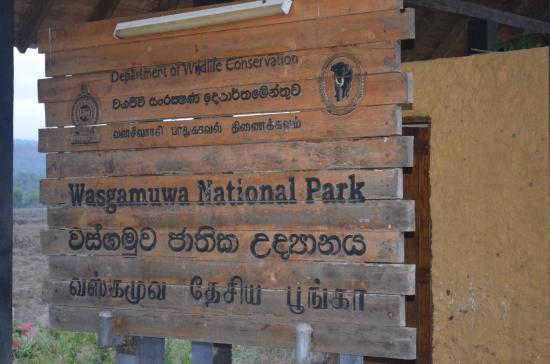 Wasgamuwa National Park: place