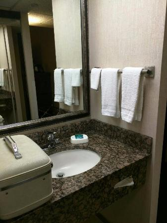 Drury Inn Shawnee Mission Merriam: sink area