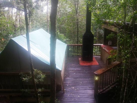 SAN Parks Knysna Forest Camping Decks