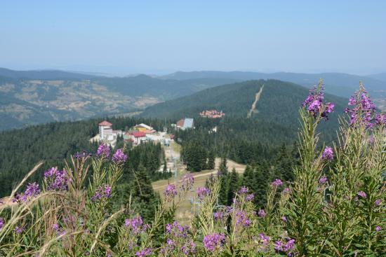 Kastamonu İli, Türkiye: Ilgaz Dağı Milli Parkı