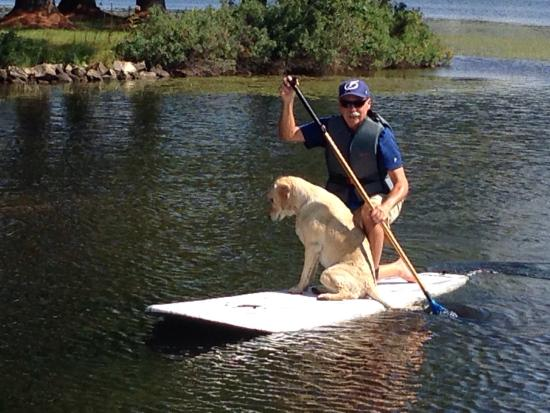 "Caroga Lake Marina dog ""Trooper"" giving me a paddle board lesson 😎"