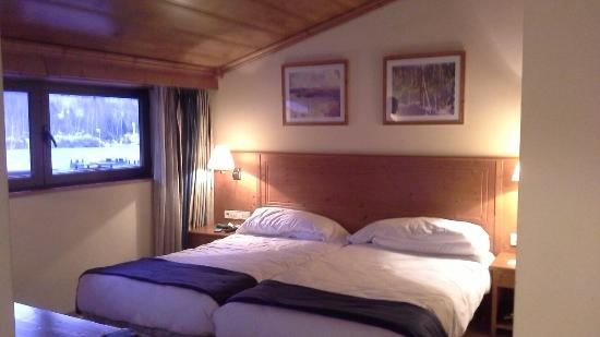 Euroski Mountain Resort: Our cheaper room & view