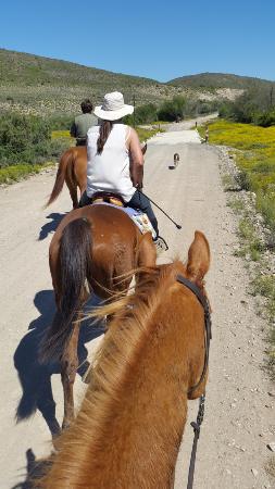 Calitzdorp, Sydafrika: Rooiberg Trail