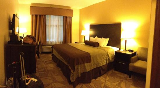BEST WESTERN PLUS The Inn & Suites At the Falls: Large room, king size bed.