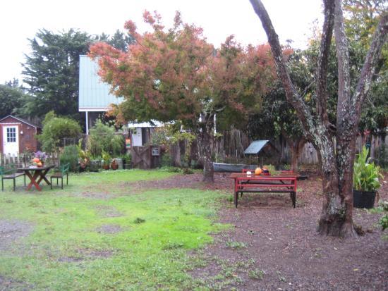 Olema, Калифорния: View of yard