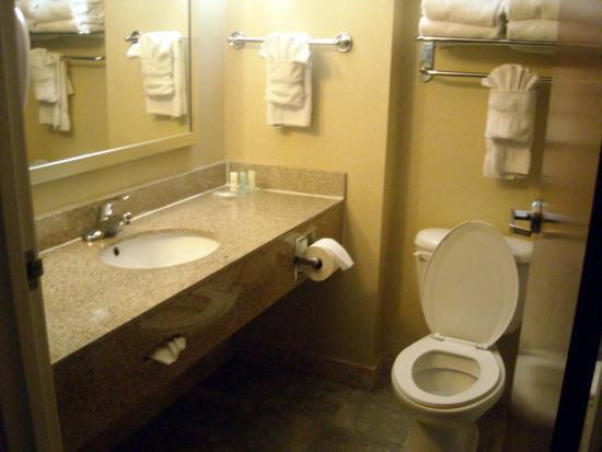 Comfort Suites Atlanta Airport: the bathroom