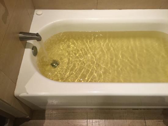 L'Auberge Casino Resort Lake Charles: I think I may bathe in the fountain.