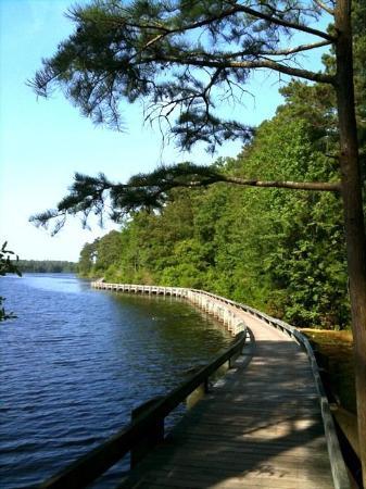 Cheraw State Park - Lake Juniper boardwalk