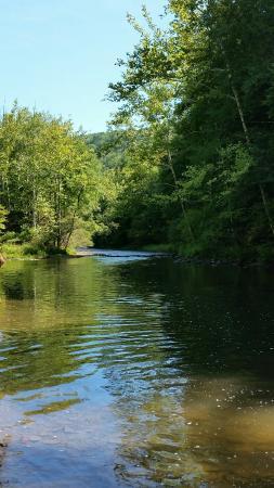 Cross Fork, PA: Kettle Creek
