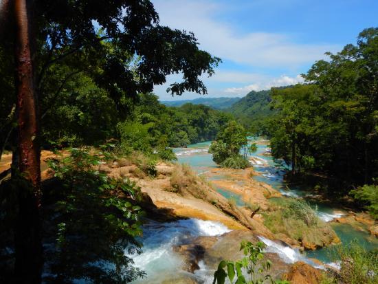 Paisaje picture of cascadas de agua azul palenque for Cascadas de agua