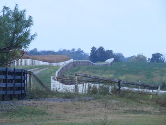 Σπρίνγκφιλντ, Κεντάκι: Pastures
