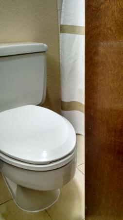 Tampa Marriott Wests Small Bathroom Door Barely Clears Toilet Bowl
