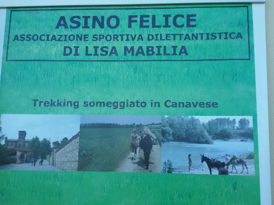 SIFE Asino Felice ASD APS