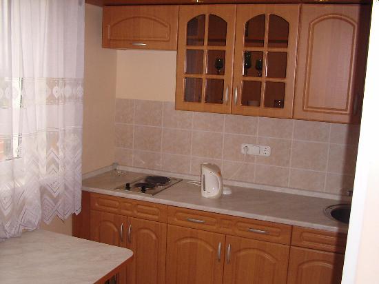 Hotel Orekhovo : Это кухня