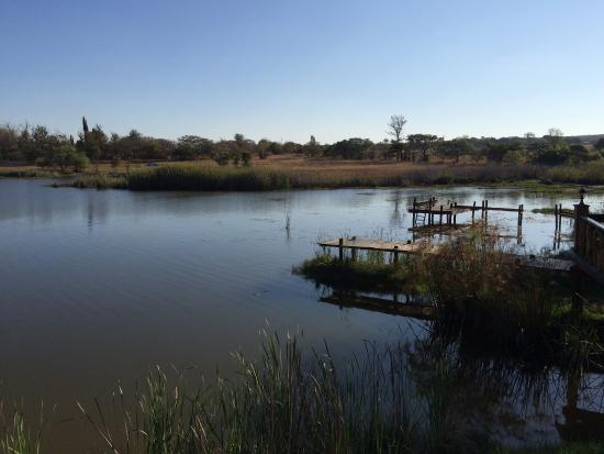 Modimolle (Nylstroom), Sydafrika: Well stocked fishing dam, carp, bass, kurper, barbel.