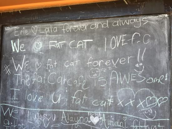 The Fat Cat: photo0.jpg