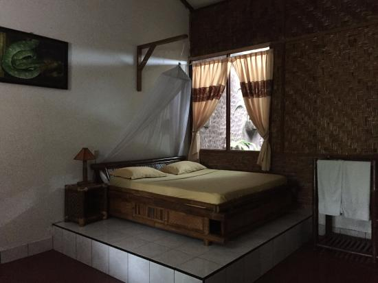 sympa la chambre ORANG OUTAN avec son lit en estrade ...