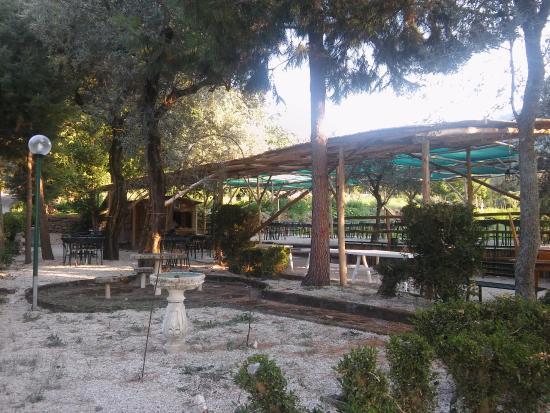 Hotel Soggiorno Salesiano: Panoramica