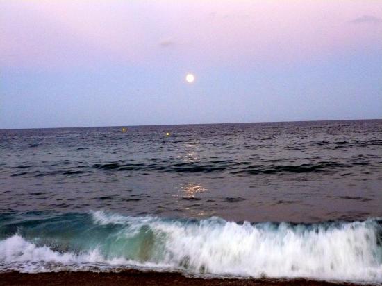 Наступает вечер - Picture of Nova Mar Bella Beach, Barcelona - TripAdvisor