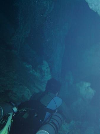 Dos Ojos Scuba Dive Shop : Diving in Dos Ojos Cenote