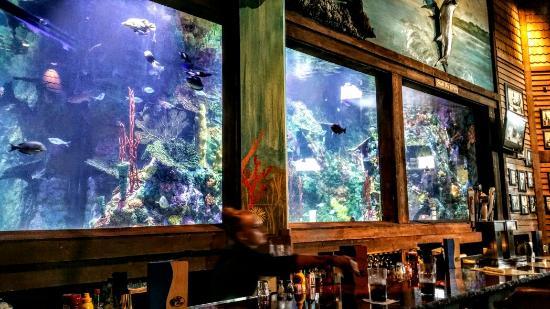 Islamorada Fish Company decor Picture of Bass Pro Shops