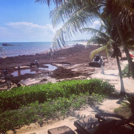 Maya Tulum Resort : photo0.jpg