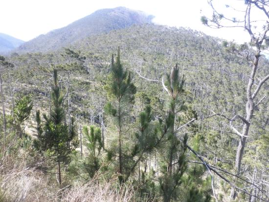 Santiago Province, Dominikana: Parque Nacional Rodriguez