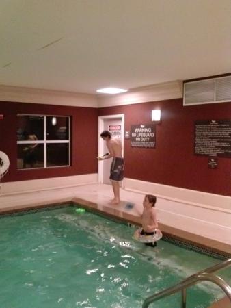 Homewood Suites by Hilton Bloomington: pool area