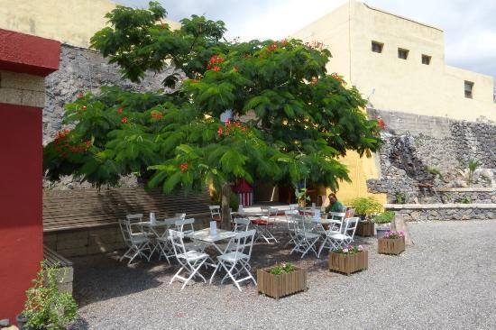 MoringaPark Tenerife: Schattenplatz