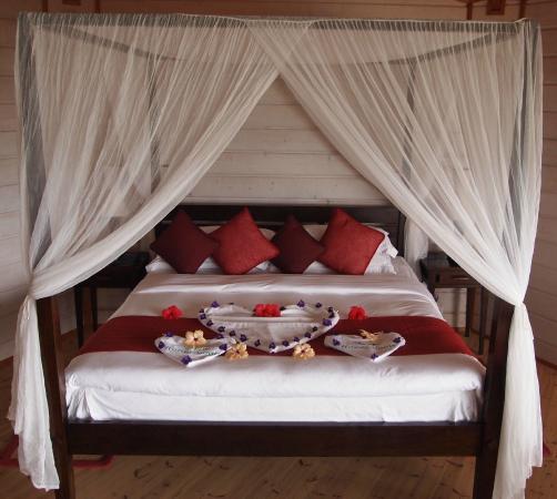 Honeymoon Decoration In Maldives : Honeymoon T Shirt Decorations - Picture of Komandoo Maldives Island ...