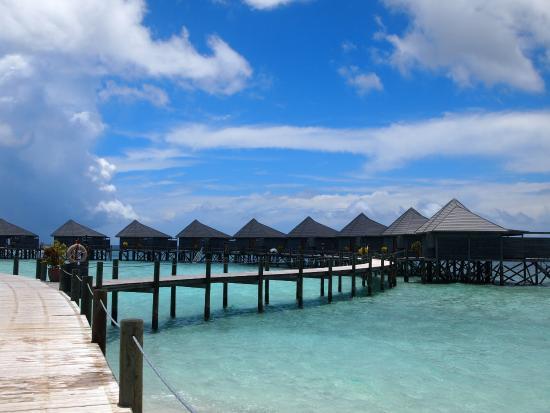 Honeymoon T Shirt Decorations - Picture of Komandoo Maldives Island ...