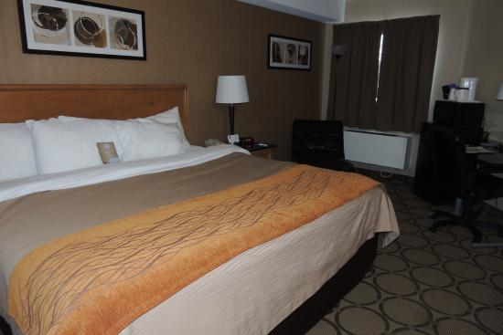 King bed was fine picture of comfort inn charlottetown for Comfort inn bedding