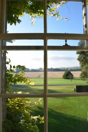 Ballymaloe House Hotel: View outside the bedroom window