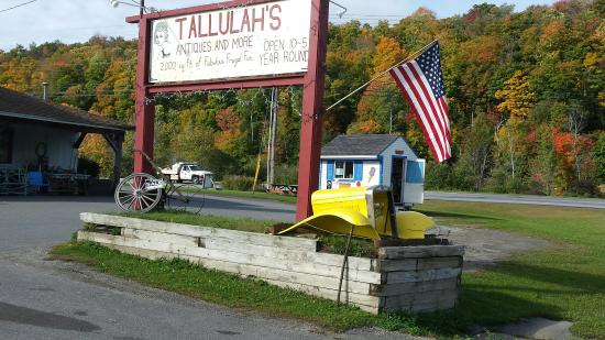 Tallulah's Antiques & More