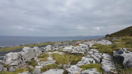 Burren Exposure