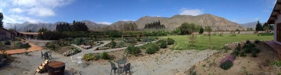 El Molle, Chile: Views from back of hotel