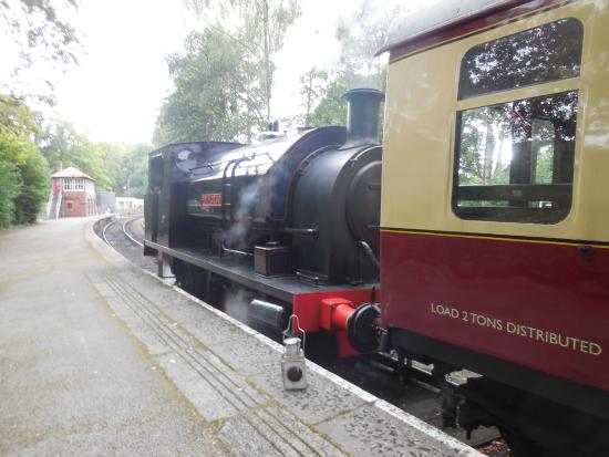 Bowness-on-Windermere, UK: Steam train trip also available and worth it.