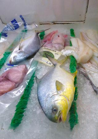 Ocean's Seafoods: Fish case