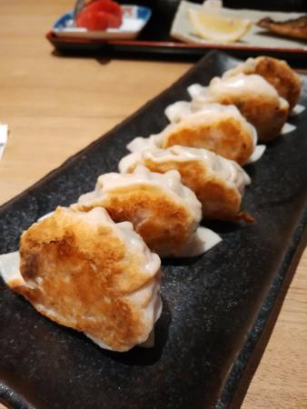 Kiku-Zakura Japanese Restaurant: Gyoza